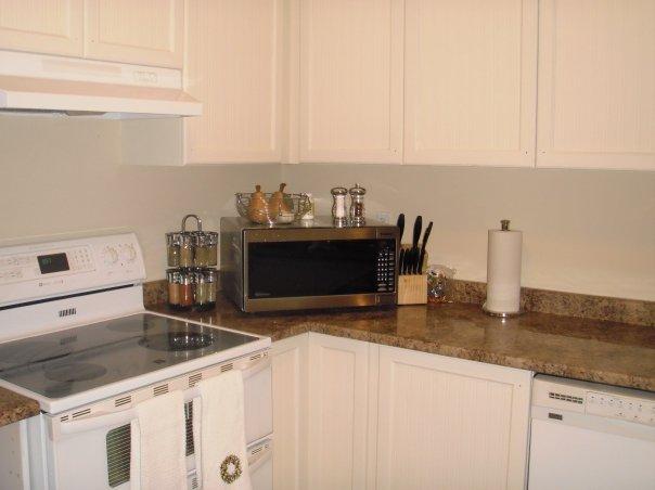 Kitchen Reno Twobertis
