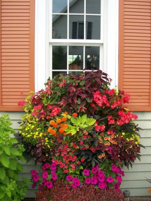 backyard dreams pretty planters twobertis